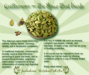 A handy little infographic I made to remind people about the wonderful benefits of cardamom.