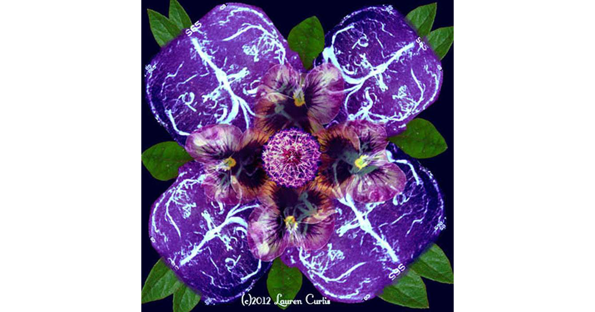 Brainflower by Lauren Curtis Art [Features – Creatives – Visual Arts]